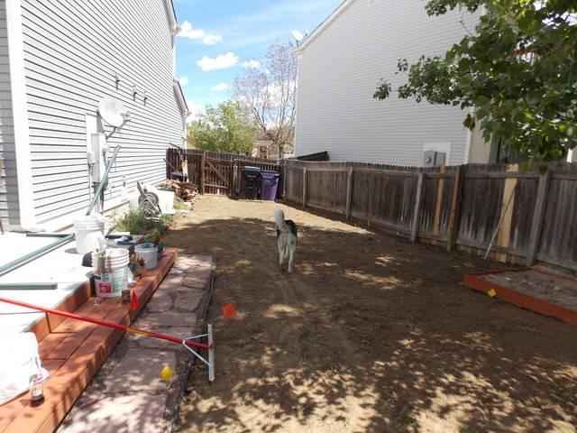 Jenn's 2015 Gardening thread DSCN1756
