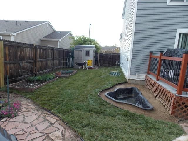 Jenn's 2015 Gardening thread DSCN1764