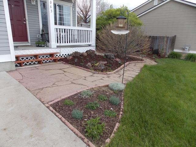 Jenn's 2015 Gardening thread DSCN1773