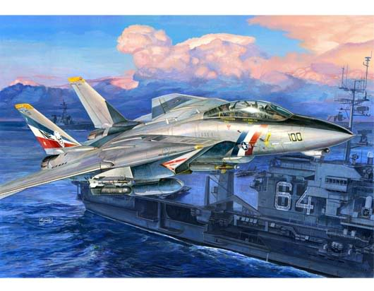 More Trumpeter future releases F14D