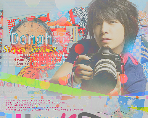 → Vαиɗеявυя Gαʟʟɛᴙʏ;~ Donghaetag