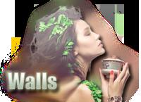 → Vαиɗеявυя Gαʟʟɛᴙʏ;~ Walls