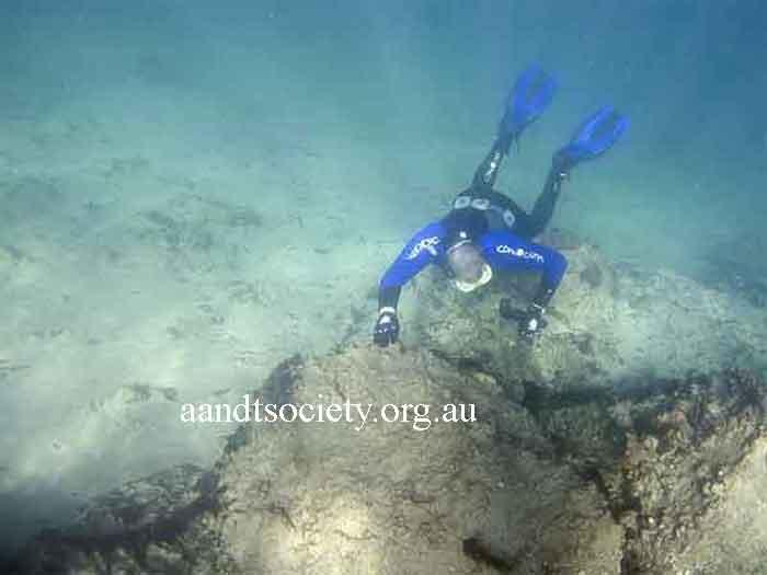 Amity point Amity-Diver-_zps44bb6773
