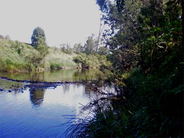 Sharp park camping in the gold coast hinterland. 16a-