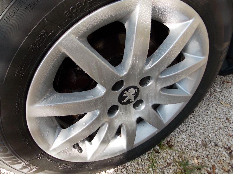 Angelwax Bilberry Wheel Sealant DSCN5145
