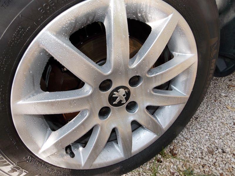 Angelwax Bilberry Wheel Sealant DSCN5148