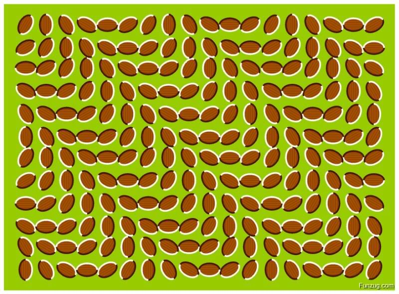 Watch eye Twisters...! Jpegbest_optical_illusions_Funzugor
