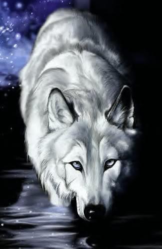 Felix Whitewolf