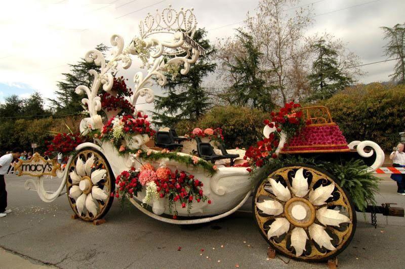 .(Flower Carnival ( Very Cute ) . WwwFunAndFunOnlyin_14