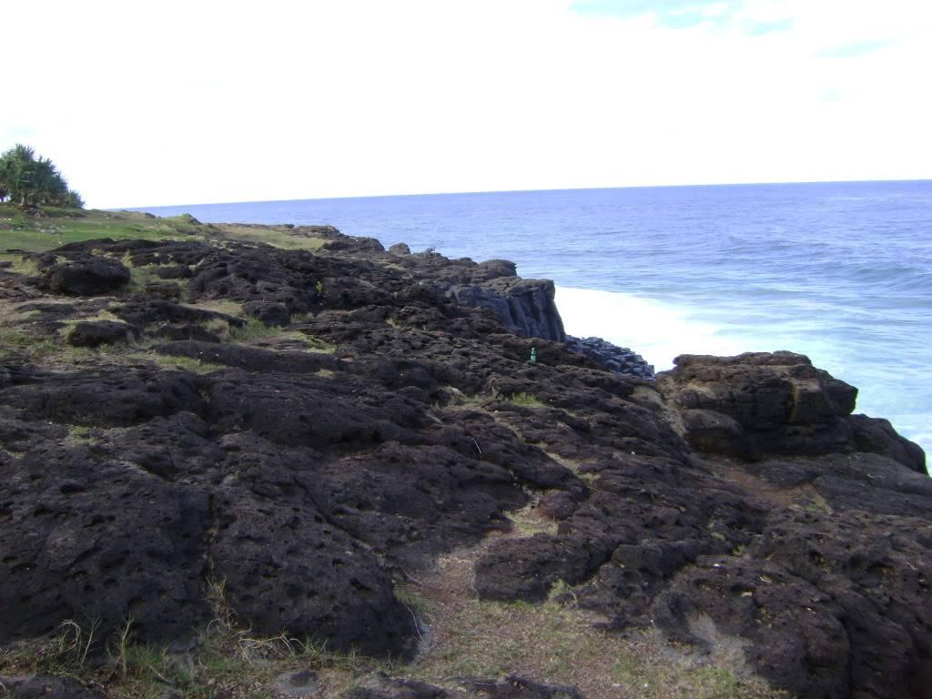 Fingal Head, Northern NSW 1