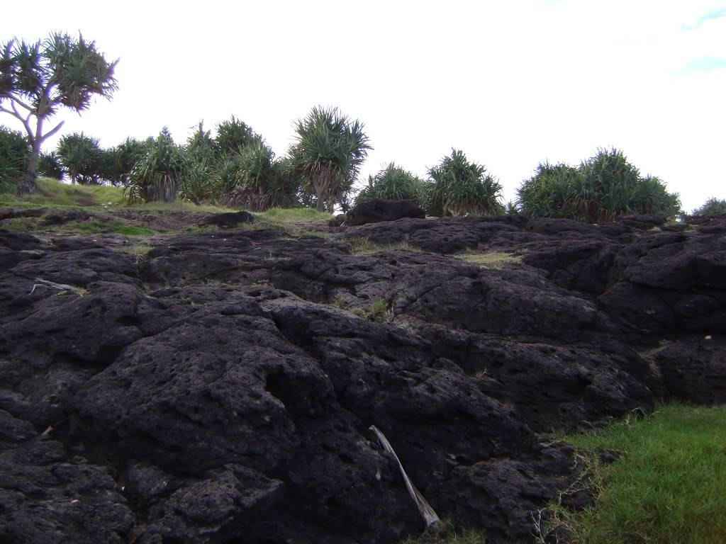 Fingal Head, Northern NSW 3