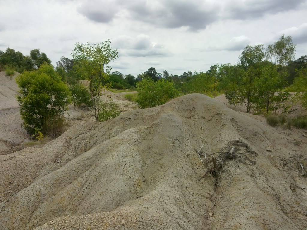 New spot in Redbank Plains/Bellbird Park, near springfield - Old Quarry 31102010055
