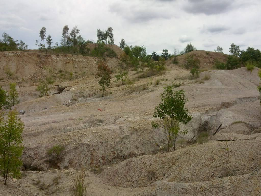New spot in Redbank Plains/Bellbird Park, near springfield - Old Quarry 31102010056