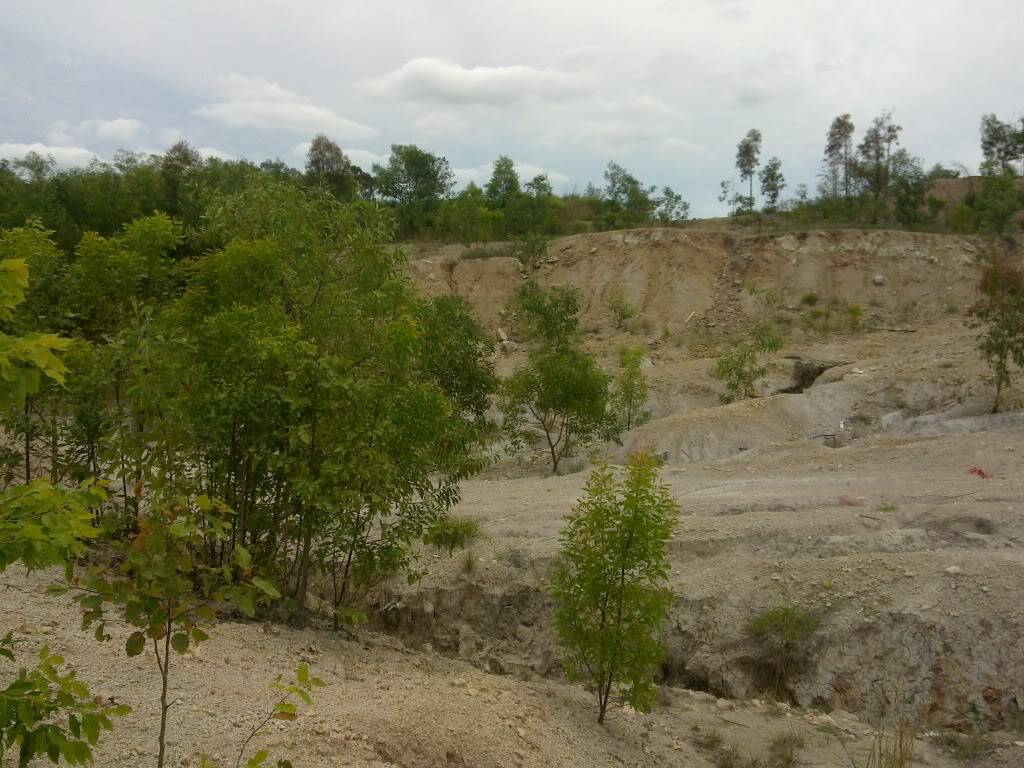 New spot in Redbank Plains/Bellbird Park, near springfield - Old Quarry 31102010057