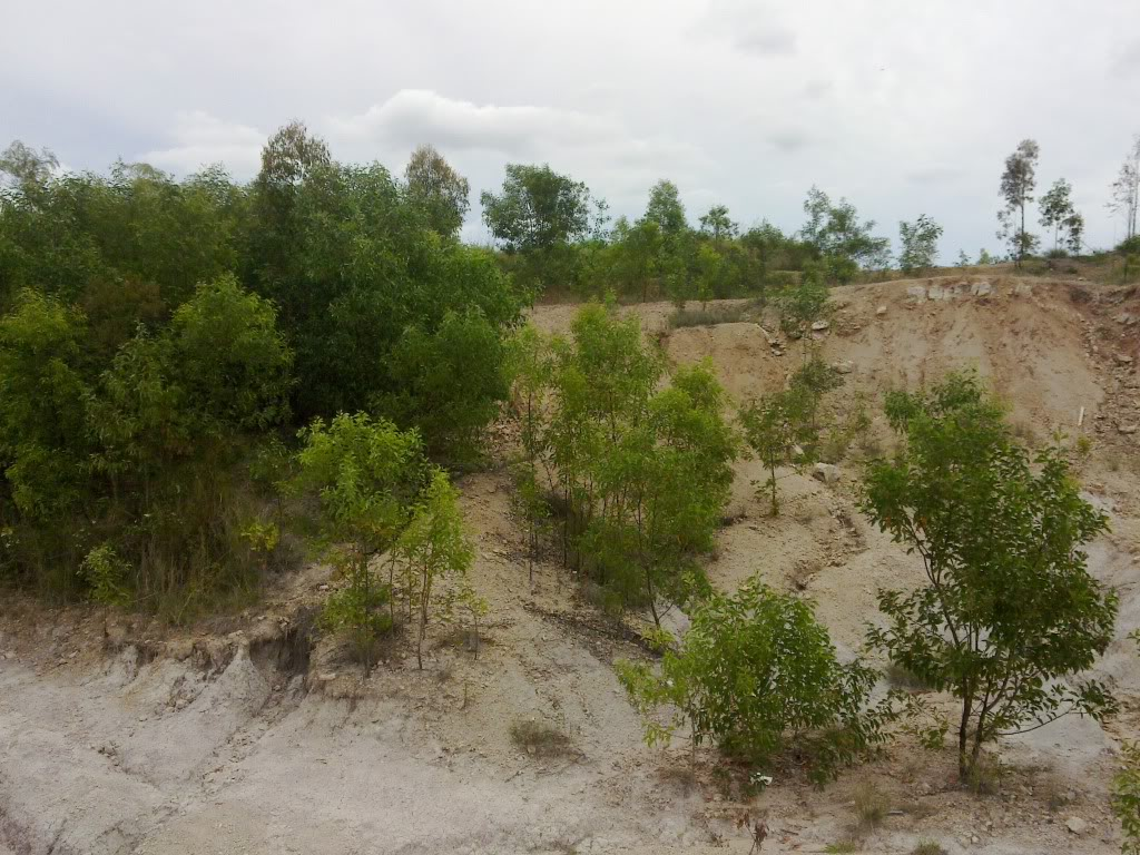 New spot in Redbank Plains/Bellbird Park, near springfield - Old Quarry 31102010059