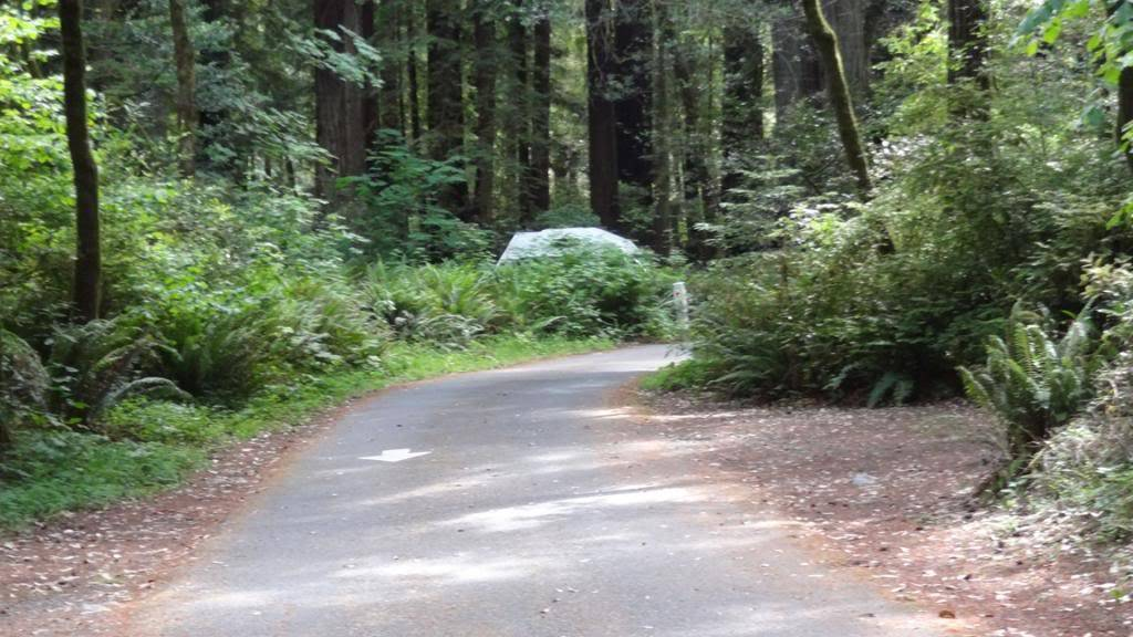 VW Syncro Westfalia - Build Log with Pics - Page 7 DSC04523