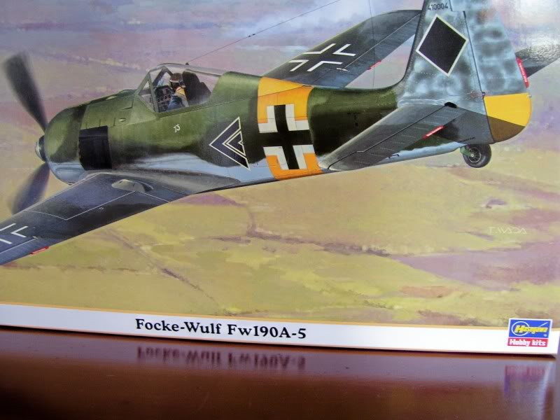 Focke Wulf 190 A-5 Walter N. Hasegawa 1/48 (Terminado) FockeA51
