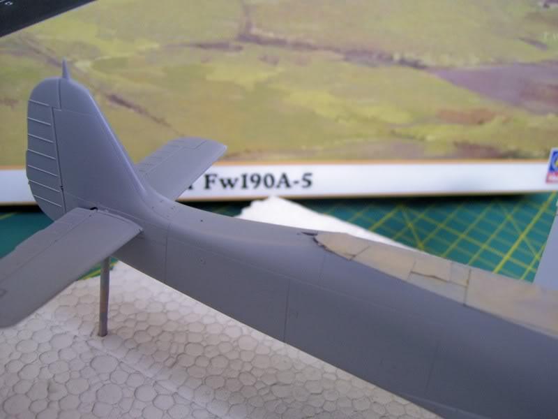 Focke Wulf 190 A-5 Walter N. Hasegawa 1/48 (Terminado) Ultimosavancess21