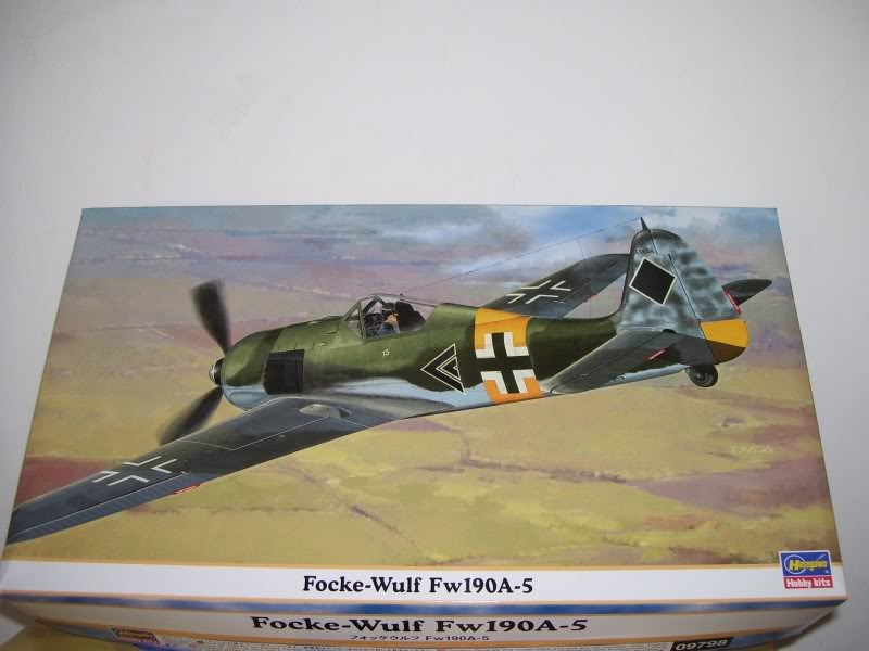 Focke Wulf 190 A-5 Walter N. Hasegawa 1/48 (Terminado) FockeA56-2