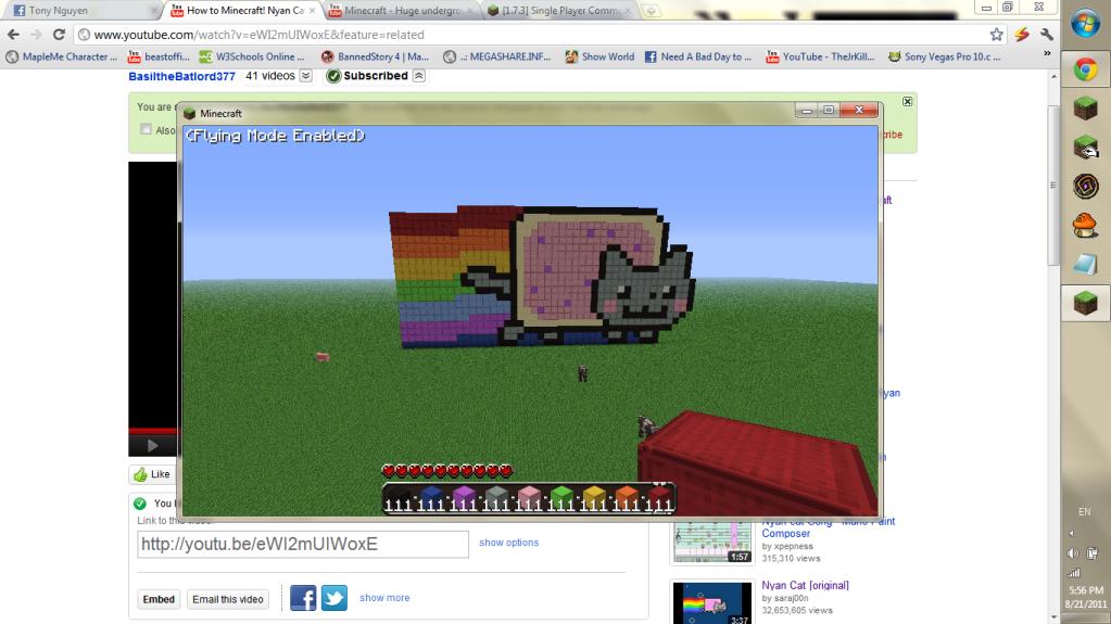 Screenshots !! :D MinecraftNyanCat