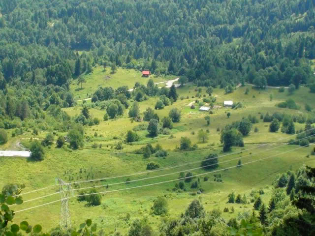 Planina DSC01491-1