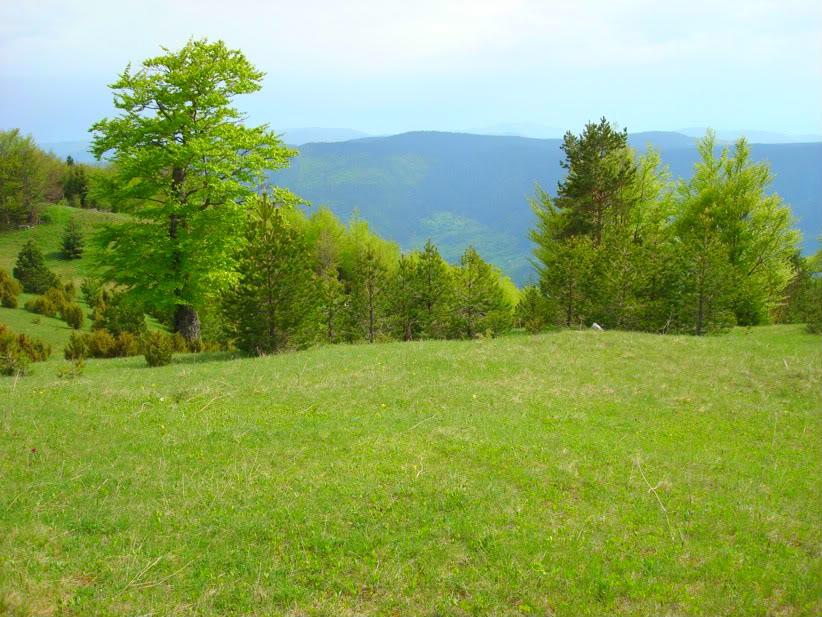 Slike  Planine,prirode,naseg kraja ZBUKVA-1
