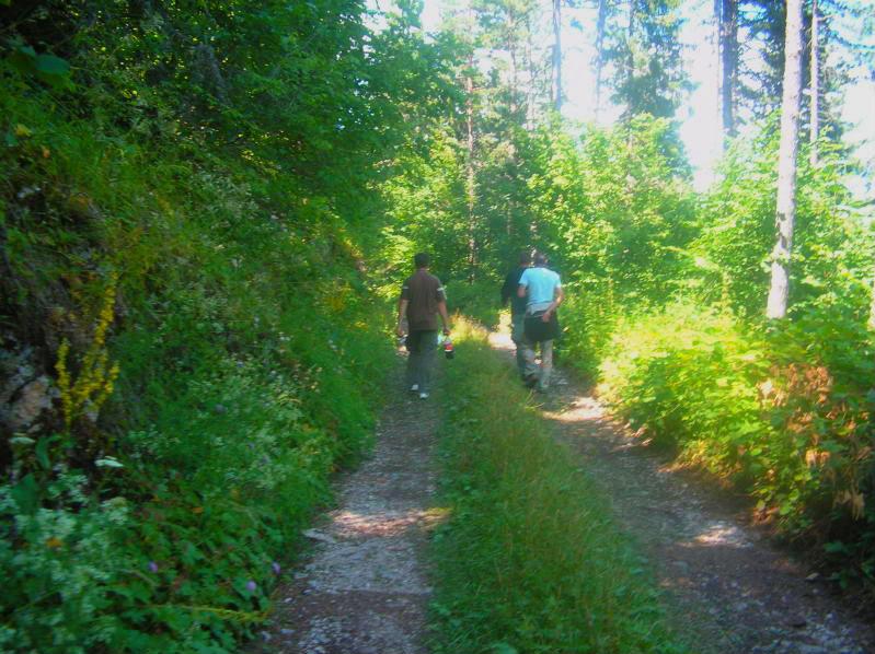 Put kroz nasu planinu.. Slikecavciciisrebrenica226-1