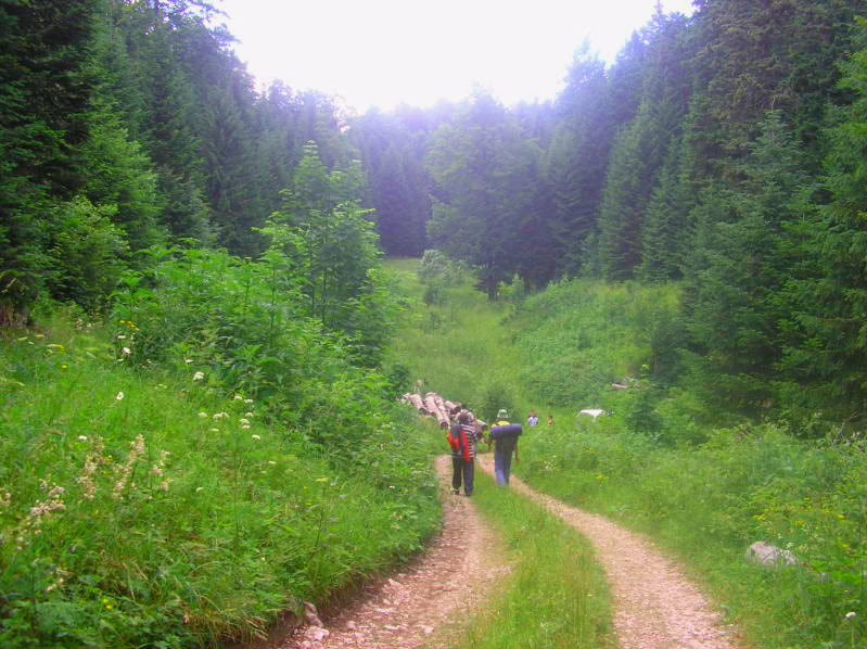 Put kroz nasu planinu.. Slikecavciciisrebrenica232-1