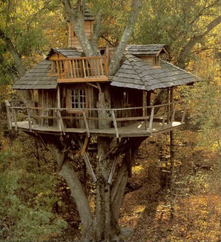 The Treehouse Treehouses002s0oi