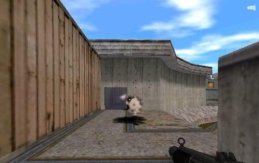 AK-Garnade and Shotgun G3