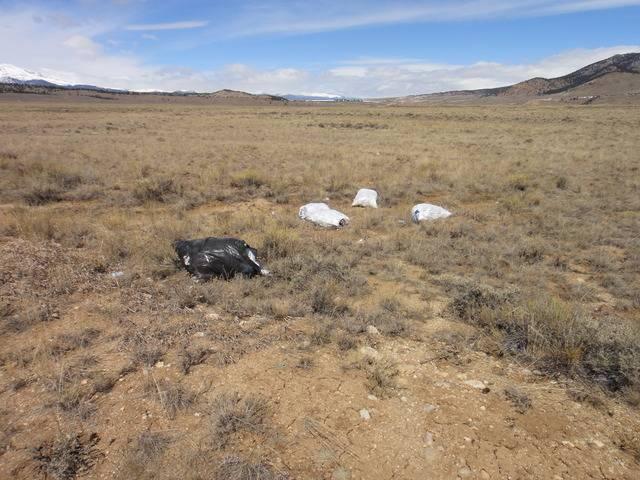 Colorado -- Metal Detecting Cache Creek -- 24 Mar 2016 DSC08304_zpswtn8lp5m