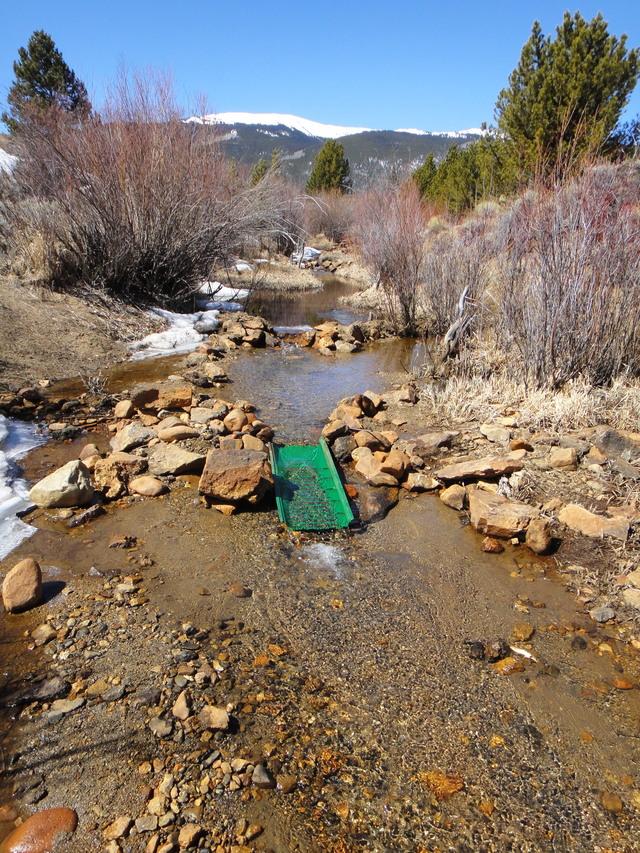 Colorado -- Sluicing Cache Creek -- 2 April 2016 DSC08346_zpsslrtgivv