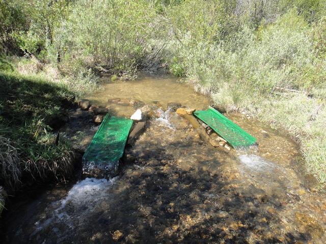 Colorado -- Sluicing Cache Creek with Matt -- 16 June 2017 DSC09727_zpsqbjnwwge
