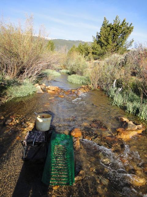 Colorado -- Cache Creek Sluicing with Ron -- 8 June 2016 DSC08640_zpse7hcikez