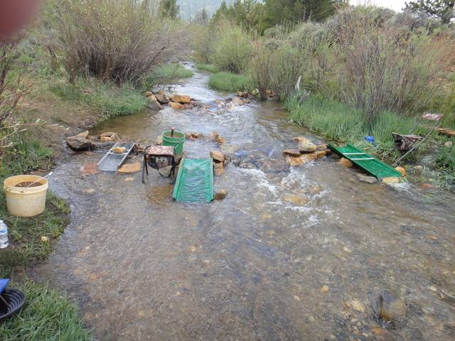 Colorado -- Cache Creek Sluicing with Ron -- 8 June 2016 DSC08647_zpslgu2oyd6