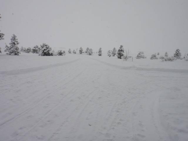 Colorado -- Snow, Snow & More Snow -- January 2017 DSC09258_zpsimswk5q5