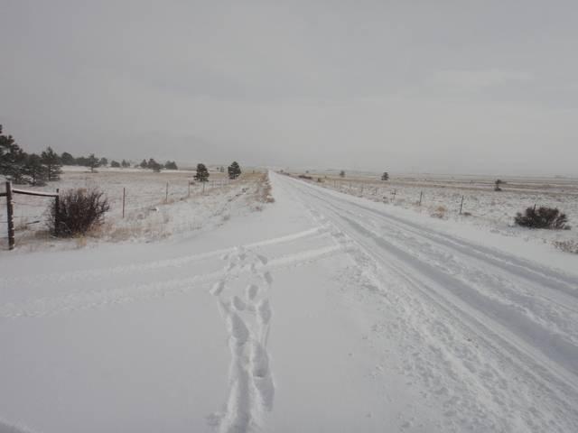 Colorado -- Snowed In.....  Cold Too!  17 Dec 2016 DSC09231_zpsk9vyrkde