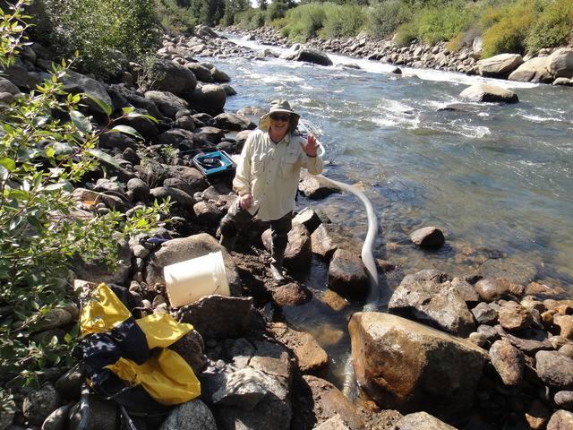 Colorado -- Randy Dredging the Arkansas River Trip Report -- Aug/Sep 2016 DSC08938_zpsz6izuiwk