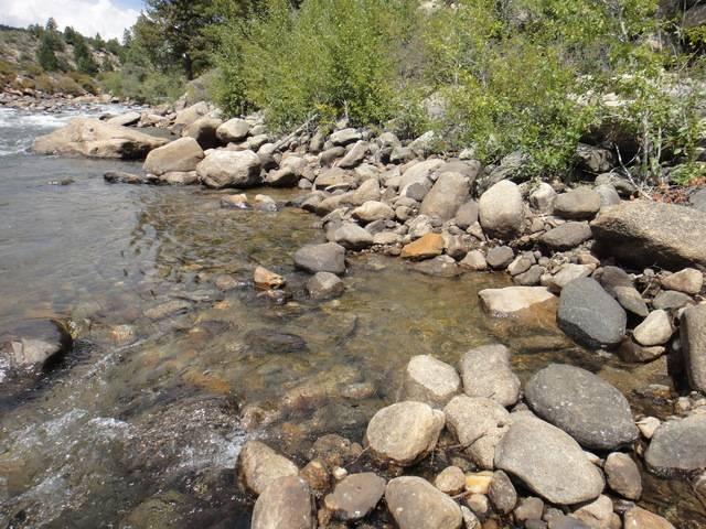 Colorado -- Randy Dredging the Arkansas River Trip Report -- Aug/Sep 2016 DSC08945_zpszmlosqiu