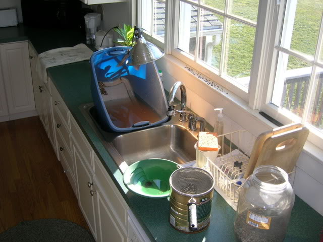 Randy's Indoor Panning Setup DSCN0957