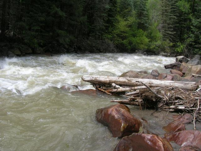 Colorado -- Gold Panning in Ouray 003_zps4c9e2222