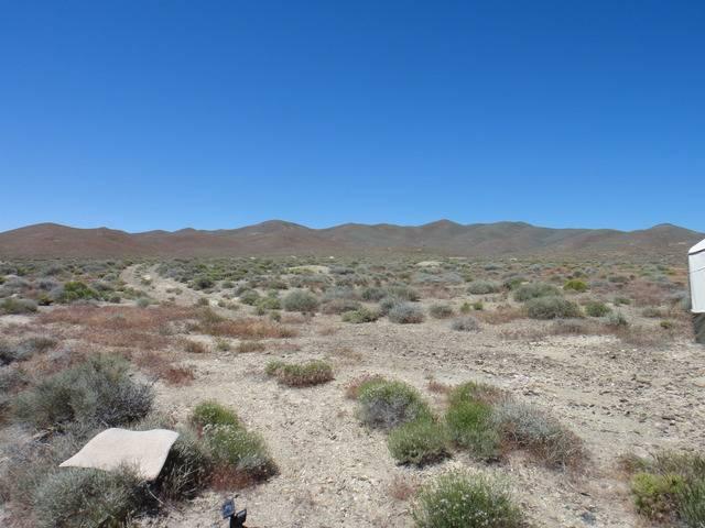 Nevada -- Rye Patch Detecting -- May 2016 DSC08516_zpspebvtdt7