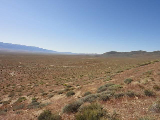 Nevada -- Rye Patch Detecting -- May 2016 DSC08524_zpstjxrsmal