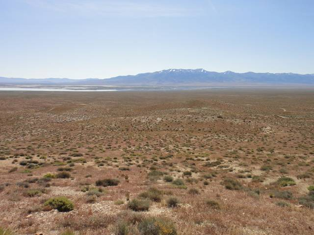 Nevada -- Rye Patch Detecting -- May 2016 DSC08525_zpso9tpnquz