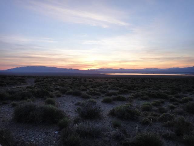 Nevada -- Rye Patch Detecting -- May 2016 DSC08535_zpsb5chgk8k