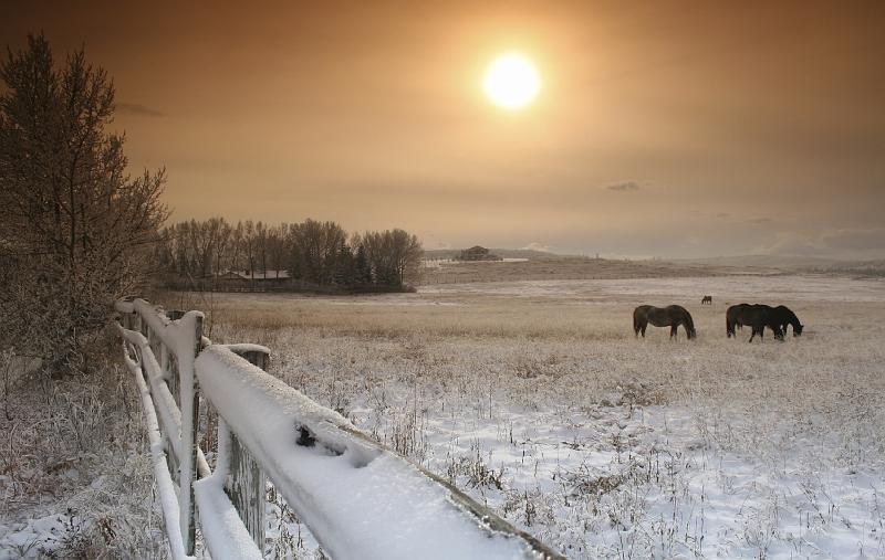 Zimske radosti 24