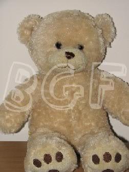 Happy Hugs Teddy! Happyhugsteddy2