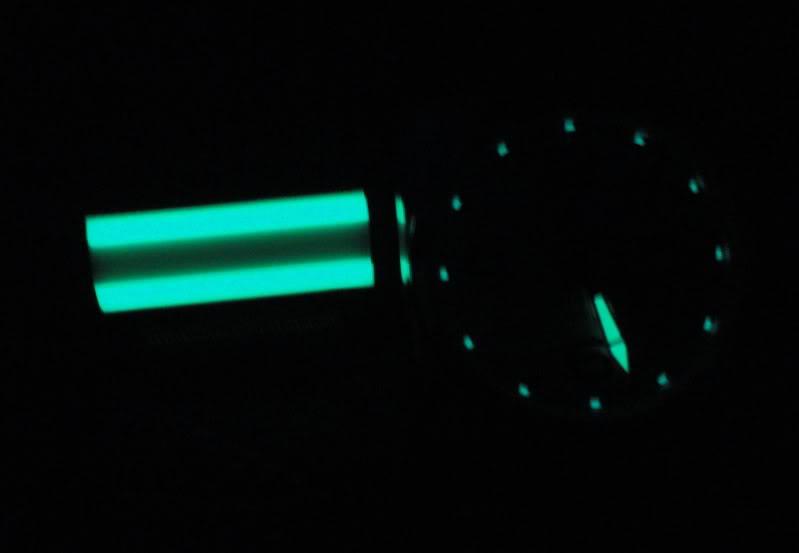 """BadgerBones """"AREA 51"""" DSC02562"""