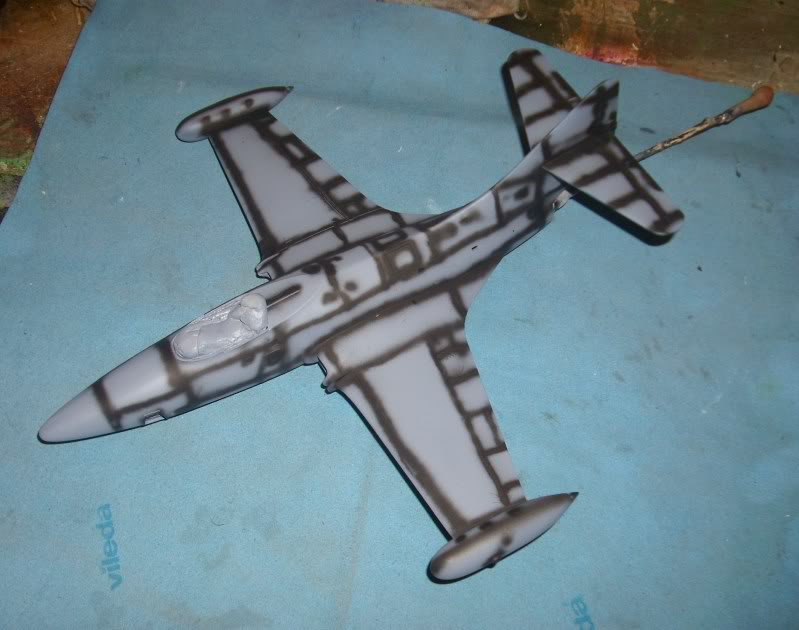 *WIP*  Panther F9F-5P, Revell 1:48 IMG_3943