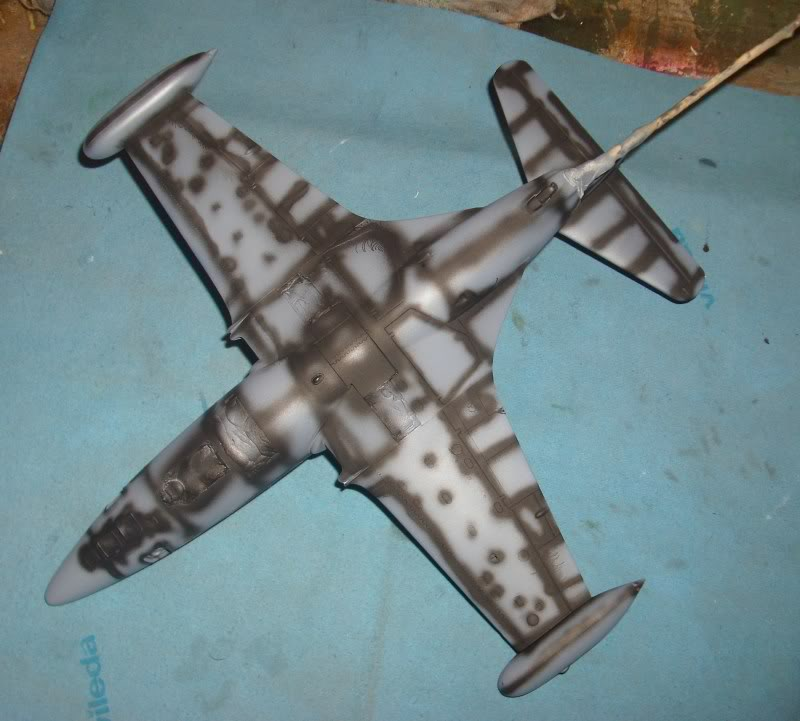 *WIP*  Panther F9F-5P, Revell 1:48 IMG_3947